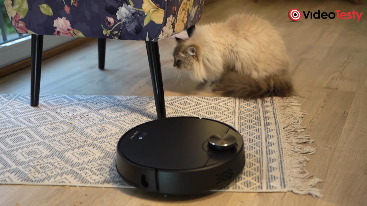 Kiano Elegance Robot na dywanie
