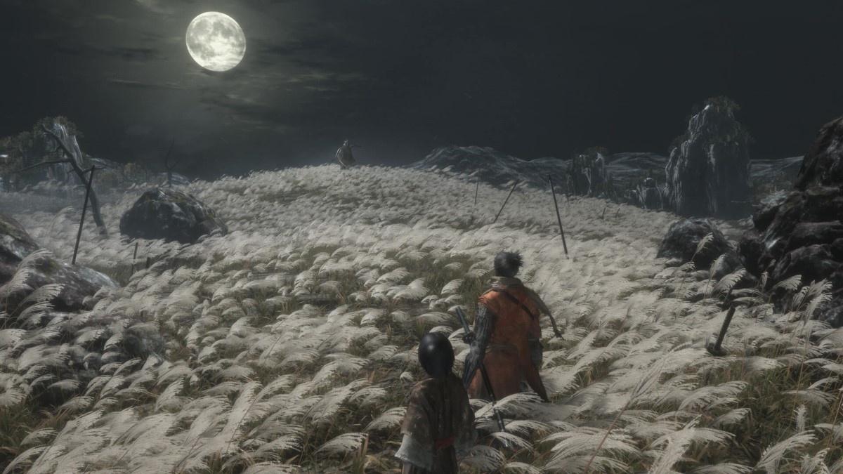 Sekiro: Shadows Die Twice scena w trawie