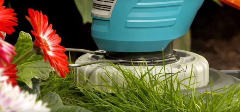 Kosa elektryczna przy kwiatach