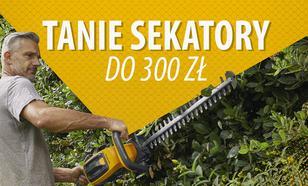 Tanie elektryczne nożyce do żywopłotu do 300 zł  TOP 5 