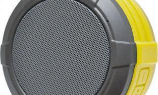 Maxcom Telica czarno-żółty (MAXTONTELICACZARZOL)