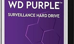 Western Digital Purple WD102PURZ
