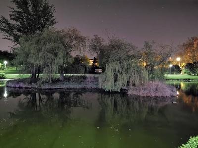 Tryb nocny w Huawei P30 Pro - staw