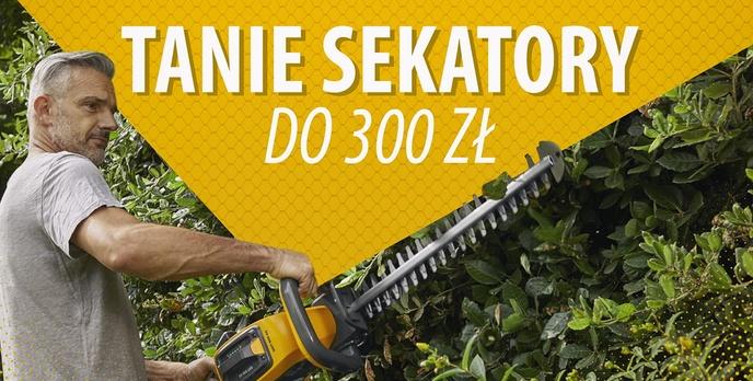 Tanie elektryczne nożyce do żywopłotu do 300 zł |TOP 5|