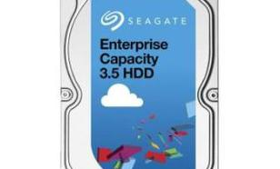 Seagate Enterprise Capacity ST3000NM0025 3TB 3,5""