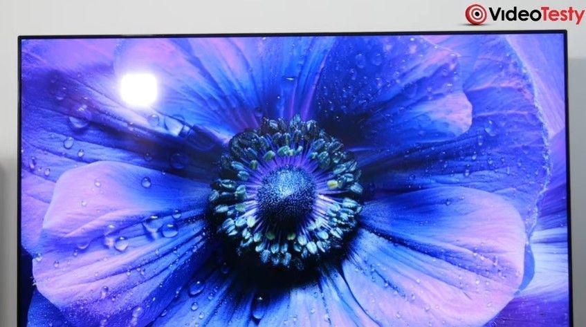 LG 55SM8600 intensywne barwy