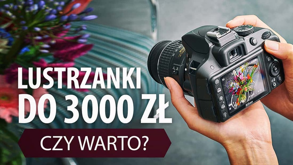 Lustrzanki do 3000 zł — Czy Wystarczą? Dla Kogo są Kierowane?