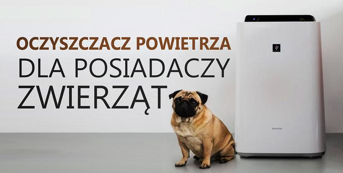 Jaki Oczyszczacz Powietrza Dla Posiadaczy Zwierząt Domowych? Poradnik Zakupowy