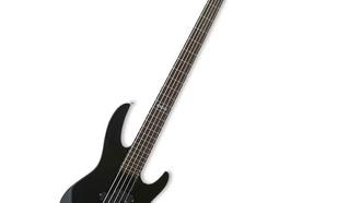 ESP B55