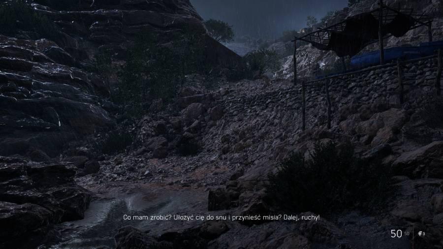 Battlefield V - Piękny obrazek