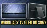Wibrujący Ekran OLED od Sony