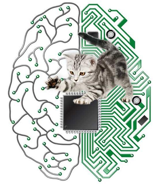 IBM - komputer jak ludzki mózg