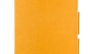 4World Etui z nożką dla Galaxy Tab 10.1, SLIM, pomarańczowe