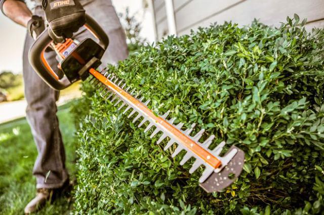 prace ogrodowe nożycami do żywopłotu i trawy