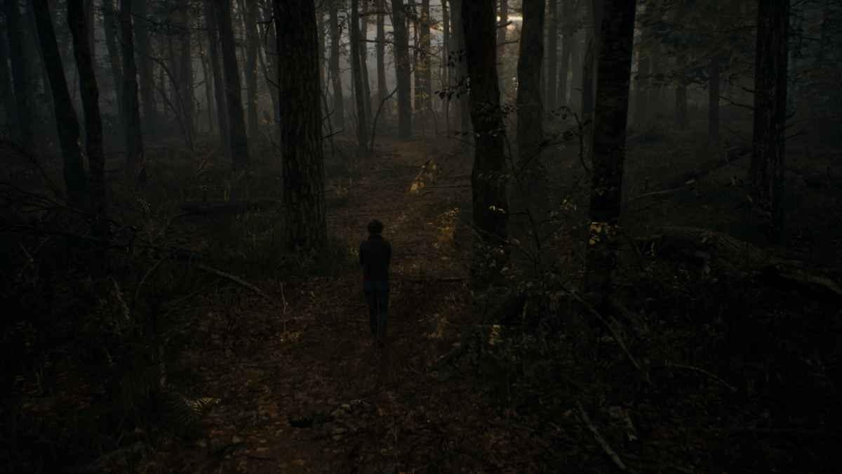The Medium - Foto realistyczny las