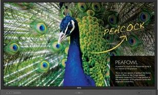 Benq 75'' RP750K LED 8ms/4K/1200:1/HDMI/USB