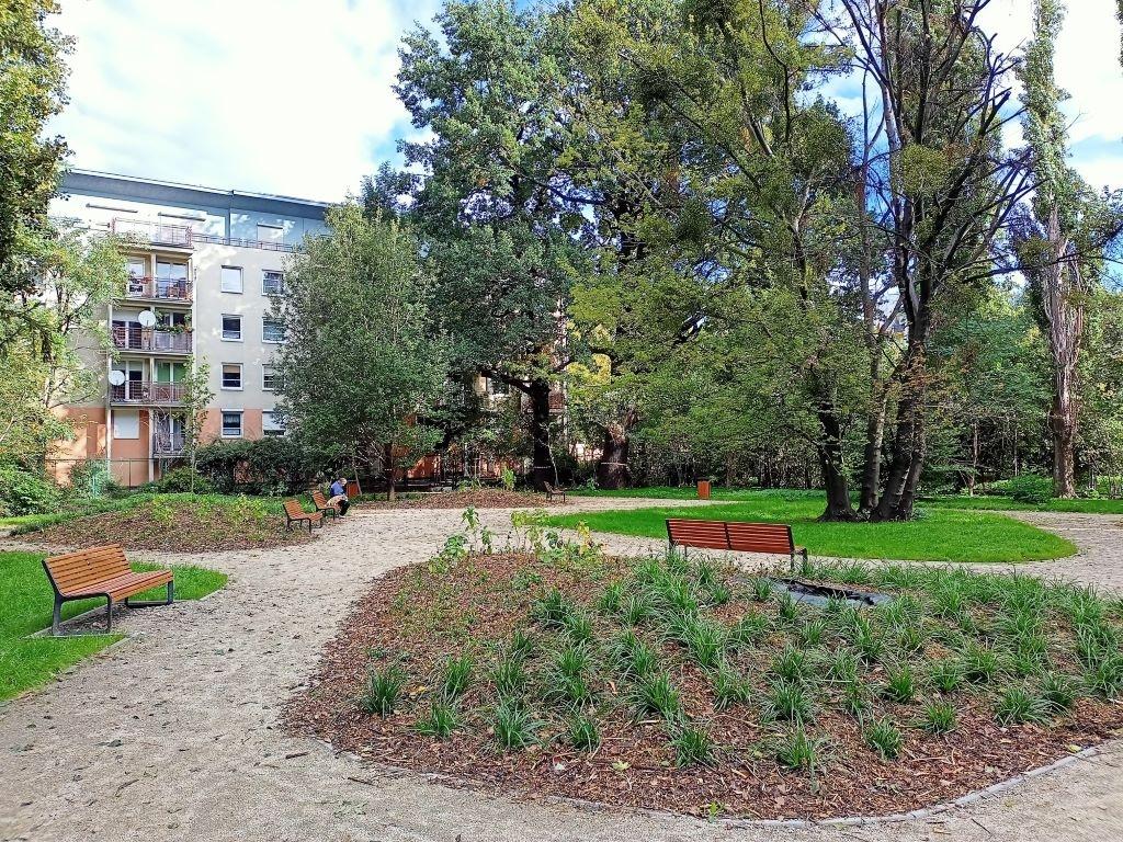 realme 7 - zdjęcie parku ze wzmocnieniem chromatycznym