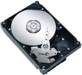 Seagate ST31000524AS Barracuda 7200.12