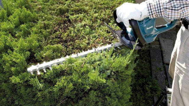 Nożyce ogrodowe Makita UH5261 o dużym zasięgu i mocnym ostrzu
