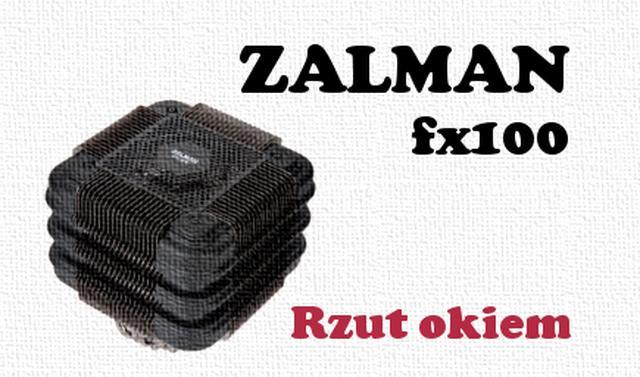 Zalman FX 100 rzut okiem [UNBOXING]
