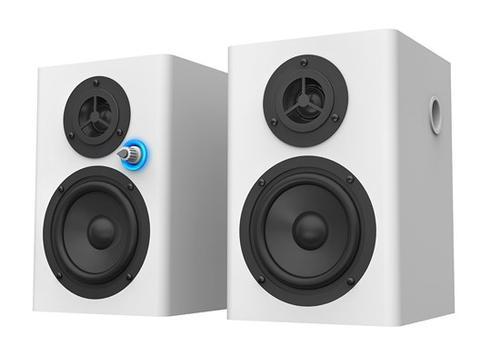 Vision SP-1100P 2x10W 80Hz-16kHz/4ohm/biały