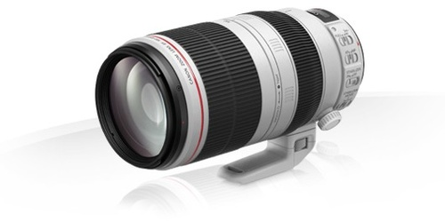 Canon EF 100-400MM 4.5-5.6L IS USM 2577A011AA