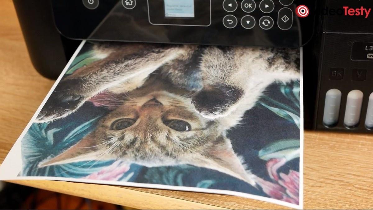 Wydruk kota przy Epson L4160
