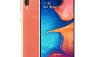 Samsung Galaxy A20e SM-A202F (coral)