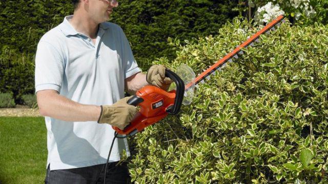 Nożyce zasilane sieciowo, to dobry wybór do średnich ogrodów