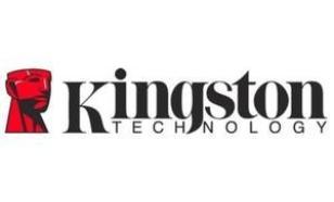 Kingston Server Memory 16GB KTH-PL313LV/16G