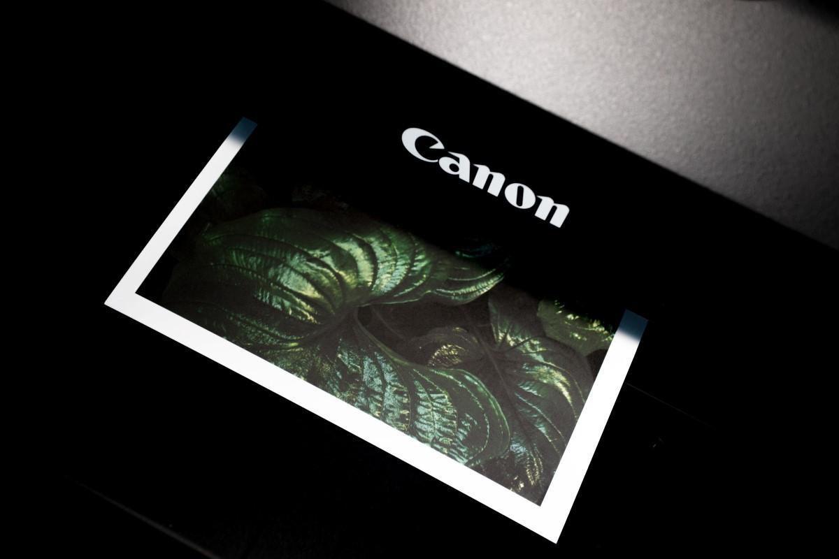 Drukarka Canona podczas drukowania zdjęcia