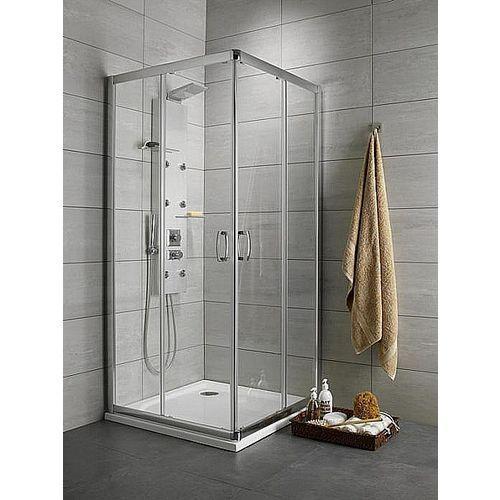 Dolphi Radaway Premium Plus 100x80