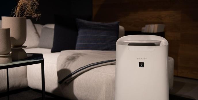 Sharp zdominuje rynek oczyszczaczy powietrza? Nowe modele z darmowym dodatkiem