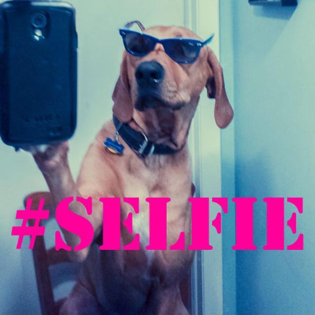 Młody Człowiek Zginął Przez Selfie!