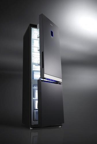 Samsung Chłodziarko-zamrażarka RL55VTEBG