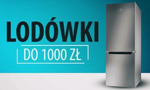 Budżetowe lodówki do 1000 zł |TOP 7|