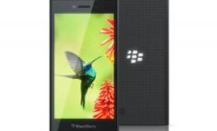 Blackberry Leap, czarny (Leap Black)