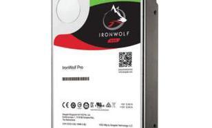 """Seagate IronWolf Pro ST6000NE0023 SATA3 3,5"""" 6TB"""