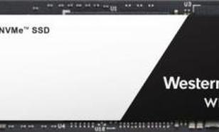 Western Digital WD Black 500GB PCIe x4 NVMe (WDS500G2X0C)
