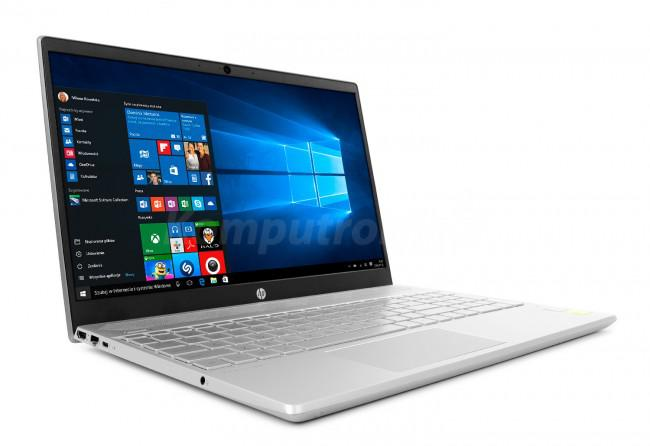 HP Pavilion 15-cs1001nw (5MM68EA) - Srebrny