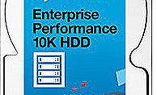 Seagate 300GB SAS 3.0 (ST300MM0048)