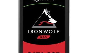 Seagate IronWolf 110 480GB - RATY 0%
