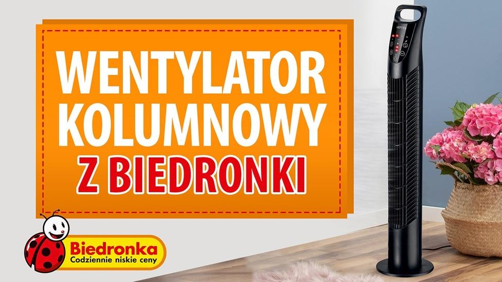 Wentylator kolumnowy z Biedronki - Kiedy i za ile?