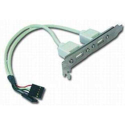 GEMBIRD USB 2XA