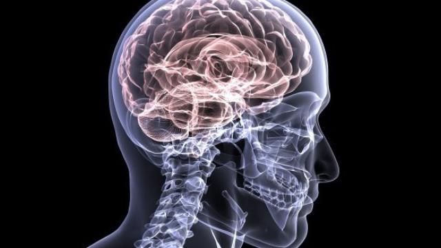 Chińczycy będą mieć skanowane mózgi?