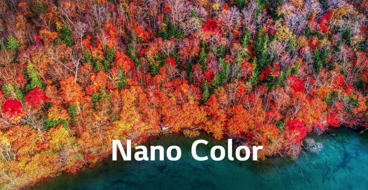 Grafika Philipsa Nano Color przedstawia jesień