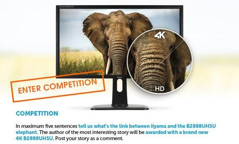 Konkurs Firmy iiyama Z Monitorem 4K