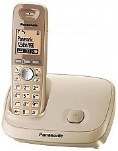 Panasonic KX-TG6511PDJ