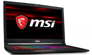 MSI GE73 Raider RGB 8RE-491XPL - 480GB SSD | 16GB