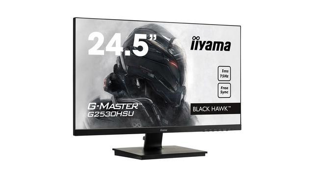 Ranking monitorów dla graczy do 1000 zł 2018 - iiyama G-Master Black Hawk G2530HSU